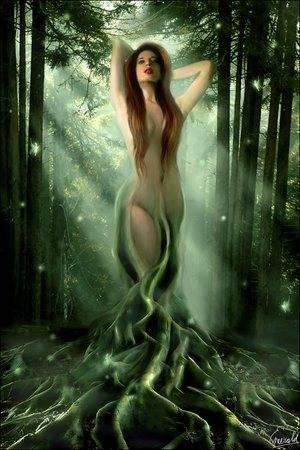 Dryad adalah makhluk legendaris dari mitologi Yunani. Menurut mitologi Yunani, Dryad merupakan makhluk, atau semacam peri, yang menghuni tumbuh-tumbuhan, berwujud wanita.