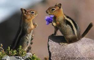 so sweet kan..??? klo so sweet klik wow donk :D