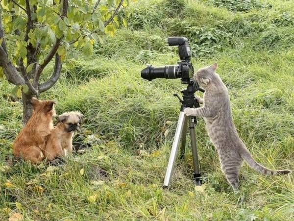 mw jadi fotografer ? belajar dulu sama si mas itu tuh... klik WOW nya yah