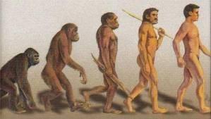 kata para ilmuan manusia terbentuk dari monyet yg berkembang menjadi manusia