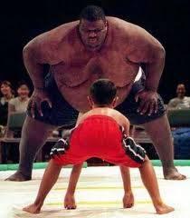 coba kalok mereka bertarung sumo siapakah menang kalok udah tau wow ya