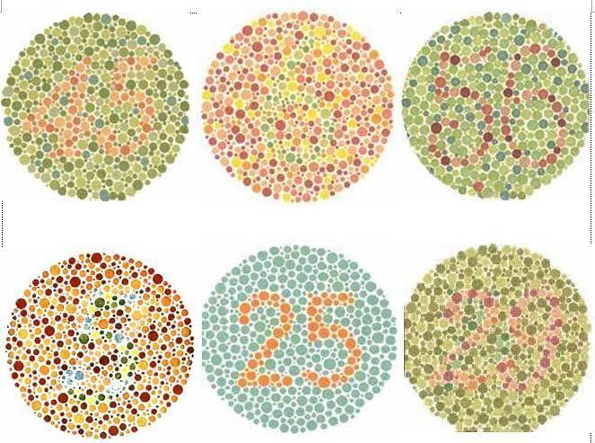 Ayoo gan ikuti tes Buta Warna disini.. jika jawaban kalian bisa jawab dengan benar berarti kalian gak buta warna..Ayo di coba gan. Tulis jawaban kalian dikomentar. JANGAN MINTA BANTUAN ATAU CARI JAWABANNYA DAHULU, COBA SENDIRI DULU, OK?