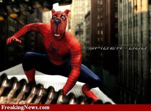 Spider-Doo?...