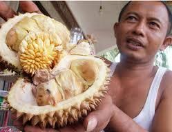 Hihihi... Anehnya durian ini, di dalam durian ini, tumbuh buah durian lagii.. Semuanya, tolong WOW-nya yaaa!!! #Yang penyuka buah durian, wajib click WOW!