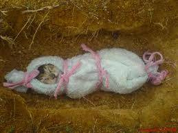 aduh kasian banget kucing niii udah lucuuuu ayo yang kasian klick wow nya ea