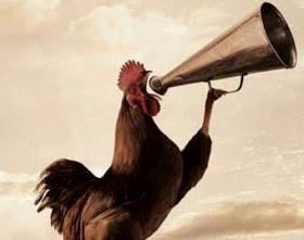 alasan mengapa ayam jantan sllu berkokok menjelang subuh & sebelum matahari terbit........!! ternyt ia memlk alarm ilmiah tersendiri, hampr smua hewan memlki siklus kegiatn yang biasa d kenal ritme sirkadian dan jg membngun kekuasaan wilayhny