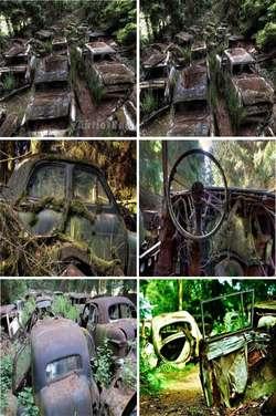 Inilah tempat yang dimana Kuburan mobil mewah pada masa perang dunia II.