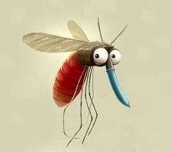10 FAKTA UNIK TENTANG NYAMUK 1. Nyamuk itu sudah ada sejak zaman dinosaurus 2. Pada