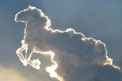 Sosok Apa yang kalian Lihat di Foto Awan Misterius INi ? - Kuda - Zebra - Jerapah - katak ?