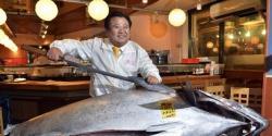 Di Jepang, Seekor Ikan Tuna Terjual Miliaran Rupiah
