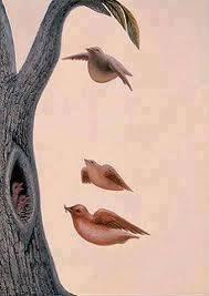 Hi sahabat pulsk,Apa yg Kamu Lihat ? a. 5 Ekor burung b. 4 Ekor burung c. 6 Ekor Burung d. Wajah Seorang Wanita