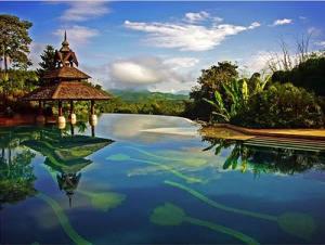 Golden Triangle Resort – Chiang Rai, Thailand...unik ya kolam renag nya di permukaan air nya ada bayangan bunga berwarna hijau