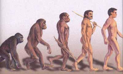 TERNYATA Manusia iTu berasal dari monyet lohh... klik WoowW nya yahh...