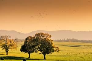 inilah gambar foto pemandangan pada waktu musim gugur mana WOW nya