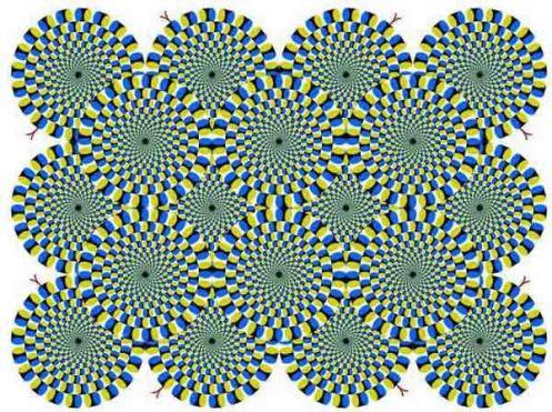 Ayooo TES IQ Apa yang anda lihat ? Apakah gambar kelihatan berputar?? Mata anda benar-benar tidak jujur, karena gambar ini sebenarnya diam. Kalau tidak percaya perhatikan dengan fokus salah satu lingkaran saja, apakah berputar?