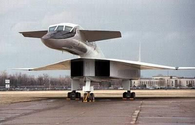 Lah..Pesawat Apaan lagi nih ..Kira2 bentuknya kya hewan apa ya?