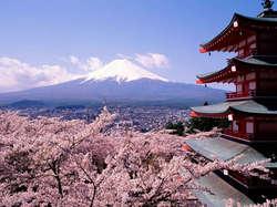 10 Hal-hal Unik dalam Budaya Jepang,,
