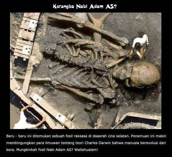 baru-baru ini ditemukan sebuah fosil raksasa di daerah cina selatan. Apakah fosil nabi Adam?wallahualam