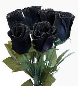 black rose cakep kan? WOW nya ya...