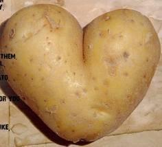 kentang berbentuk LOVE!!!