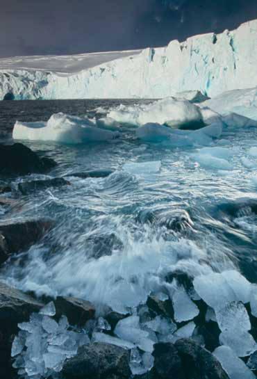 Ada 5 Efek Pada Pemanasan Global Yaitu : 1 . Efek pada Cuaca dan Iklim 2 .Efek pada Gletser 3.Efek pada Samudera Air Biokimia 4 . Efek pada Gempa 5 .Efek pada Aktivitas Vulkanik