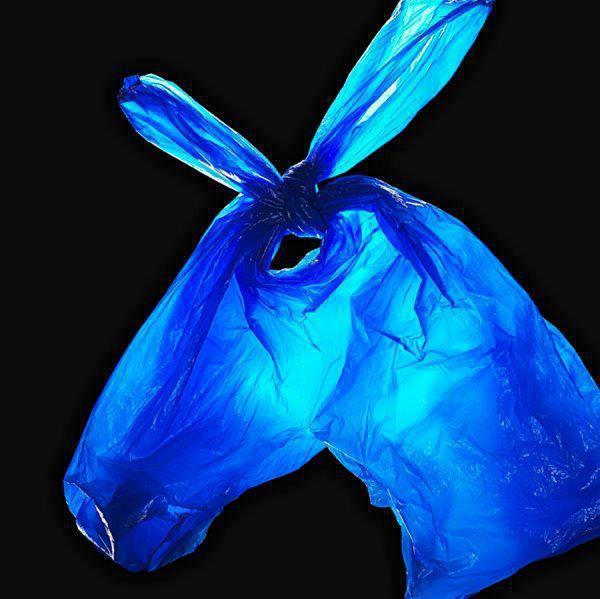 TEBAK !!! Gambar apa ini? A. Kantong plastik B. Keledai