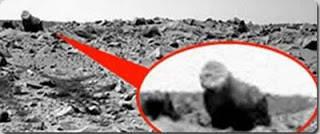 Ada Gorila di planet Mars??? Baru2 ini Nasa memdapat kiriman foto robot dari planet Mars. Salah satu foto memperlihatkan seperti bentuk seekor gorilla. Apakah memang ada kehidupan di planet tersebut?