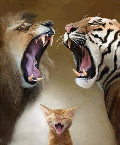 Hahahaa !! kalo lucu click wow ya kawan