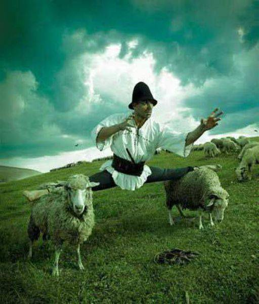 Rekayasa Foto yang Unik. hahaha lucu juga nih foto!! tapi kok kasian sama dombanya ya..