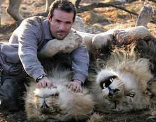 WOW orang ini dapat menaklukan 2 lion king tanpa bantuan alat apapun