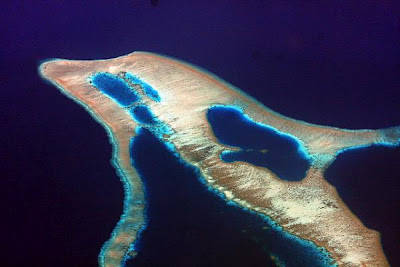 pulau lumba-lumba, dari seluruh pulau dengan bentuk yang unik, mungkin sebuah pulau di Flores, indonesia adalah yang paling unik. tidak perlu daya imajinasi yang tinggi, dari ketinggian pulau ini terlihat seperti hewan mamalia laut.