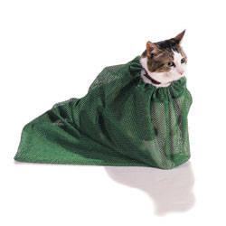 kucing didalam karung ini seperti Harry Potter yaa