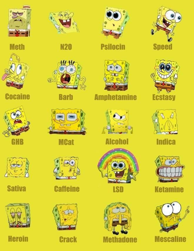 Ayo tebak Sponge Bob lagi ngapain saja ? Mana yg kalian suka
