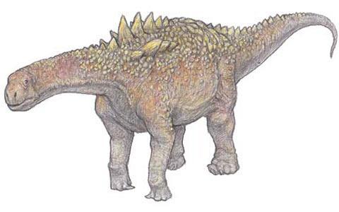 WOW.... badanya doang gede.. otaknya kok kecil ya??? Dinosaurus dikenal sebagai binatang berukuran besar yang berjalan di bumi. Namun ternyata, ada satu kelompok yang otaknya hanya sebesar bola tenis. Demikian hasil penelitian yang dipublikasi