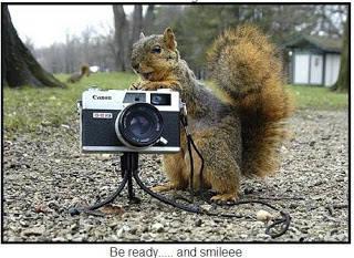 Tupai sang photographer :D