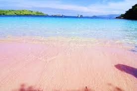 Ini yang paling unik nih, masa ada pantai warnanya pink. So sweet banget deh hahaha. Mungkin Patrick juga asalnya dari sini kali,