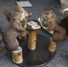 ternyata tikus juga bisa main judi .. WKWKWKWKWK :D