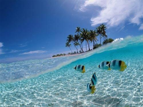 Bunaken- salah satu keajaiban dunia milik Indonesia Taman Nasional Bunaken d sebut sebgai taman laut terndah d dunia. Taman Laut Bunaken terknal krena formasi terumbu karangx yg luas dn indah, dn juga bnayk dkunjugi para turis dn mancanegara!
