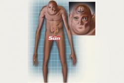 Beginilah Wujud Bentuk Tubuh Manusia 1000 Tahun Mendatang