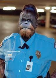 wow ada polisi bru nih spa yg brani sma ni polisi wow nya ya
