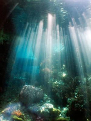Kepulauan Raja Ampat, Papua Barat Kepulauan ini merupakan tujuan para penyelam yang tertarik akan pemandangan keindahan bawah lautnya.