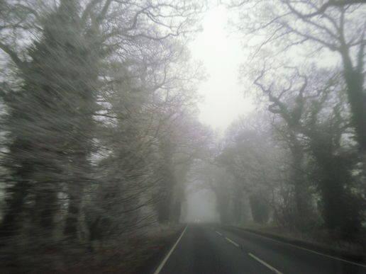 Bloodspoint Road – Illinois, Amerika Serikat percaya gak percaya inilah jalan terangker di amerika serikat dan banyak memakan korban jiwa termasuk anak-anak(WOW)