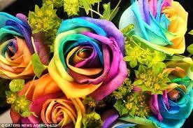 bunga termahalBunga ini asli, non artificial, dikenal dengan nama Mawar Kebahagiaan. Dibuat dengan proses penyuntikan ekstrak warna dari tumbuh2an ke batang bunga mawar. Kemudian dilakukan penyedotan ekstrak warna ini sampai ke kelopak bunganya