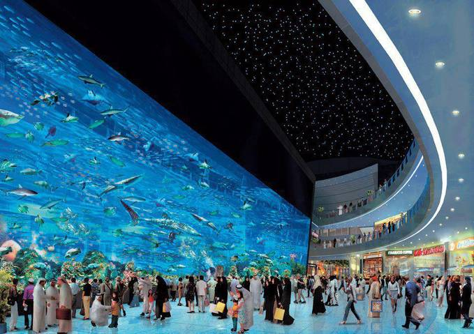 Dubai Aquarium WOW