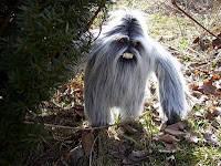 Serupa dengan Bigfoot, muncul di wilayah Himalaya. Bagi warga sekitar hutan di wilayah pegunungan itu, makhluk ini adalah penjaga hutan, dan tidak boleh diburu. Yeti atau Manusia Salju yang Menakutkan adalah sejenis primata besar yang menyerupu