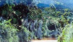 Penampakan Hantu Perang Dunia II di Kalimantan 1945