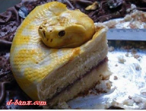 gila kuwe mirip ular aq besok mbuat kue mirip monyet kalok km suka klik wow