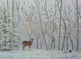 Quiz time!! Ada berapa rusa dalam gambar ?