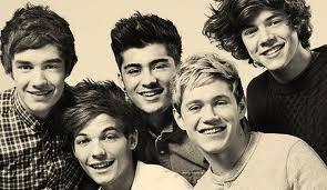 Fakta Lucu One Direction -Niall aslinya berambut coklat -Niall nangis waktu nonton Finding Nemo -Zayn gasuka cewek pintar -Harry gasuka Mayonaise -Menurut Liam tatoo itu keren