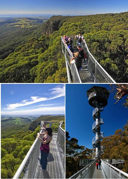 Illawara Fly Tree Top Walk (Australia)Tempat ini dibuka belum lama setelah 5 bulan pembangunan. Terletak di Knights Hill di atas tebing dekat Robertson di dataran tinggi selatan, Illawara Fly Tree Top Walk memfasilitasi pengunjung.klik WOW yah.